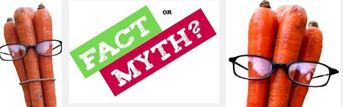 Myth Busters!